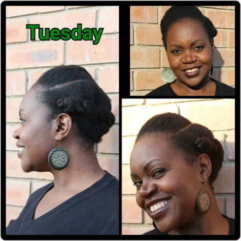 Tuesday - Halo Flat Twist